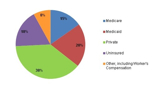 Figure 2 is a pie chart illustrating injury-related emergency department visits by expected primary payer.